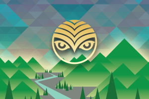 The Ultimate Shambhala Music Festival Experience - Winner #2