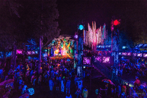 Shambhala At Home: Village Stage Edition